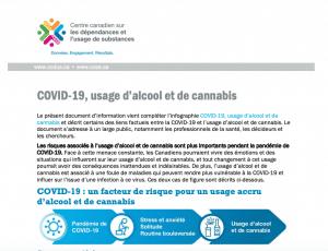 screen grab of CCSA document